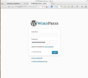 duplicate-wordpress-website-14