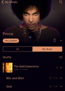 Prince in Music